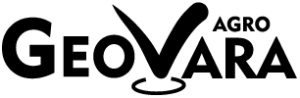 Web-306x100-px